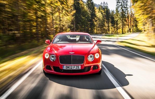 Картинка Красный, Bentley, Continental, Лес, Решетка, Асфальт, Red, Фары, Автомобиль, Передок