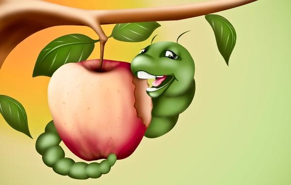 Картинка гусеница, рисунок, яблоко, ветка, арт, червяк