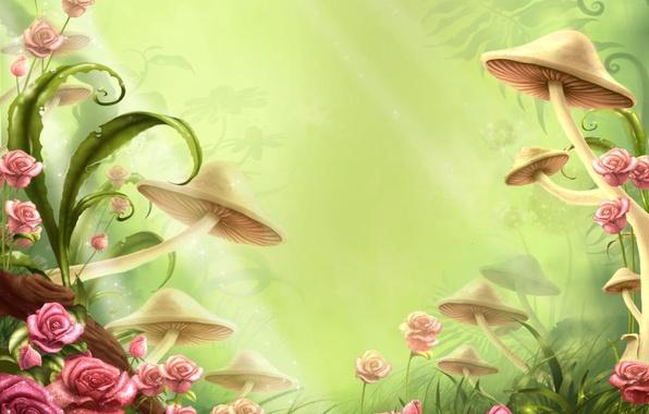 Картинка цветы, детство, грибы, сказка, полянка