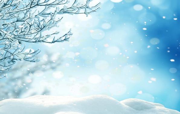 Картинка зима, лес, снег, деревья, снежинки, nature, winter, snow