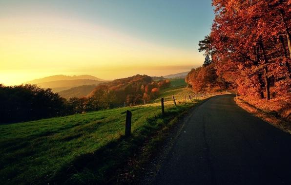 Картинка дорога, осень, небо, солнце, деревья, пейзаж, закат, природа, восход, листва, село, горизонт, местность, nature, autumn