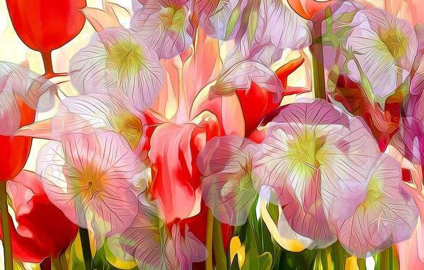 Картинка линии, цветы, рендеринг, краски, лепестки, штрих