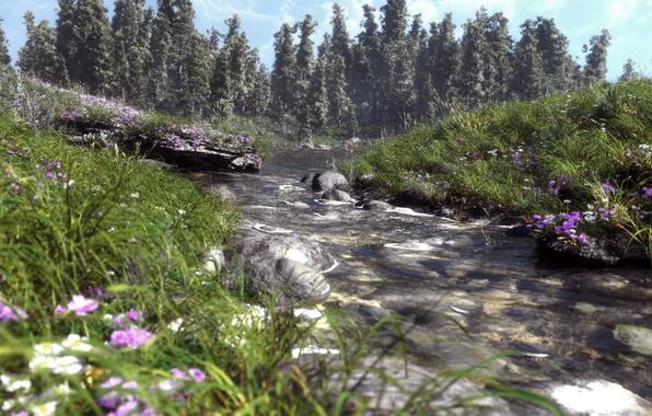 Картинка трава, деревья, цветы, природа, река, камни, ель, арт, речка, полевые, хвойные