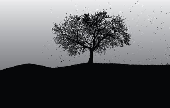Картинка темный, dark, black