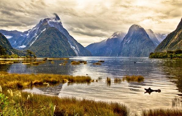Картинка небо, трава, облака, горы, озеро, новая зеландия, New Zealand