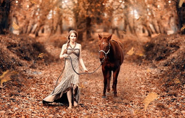 Картинка осень, листья, девушка, лошадка, Fairy tale, Alessandro Di Cicco