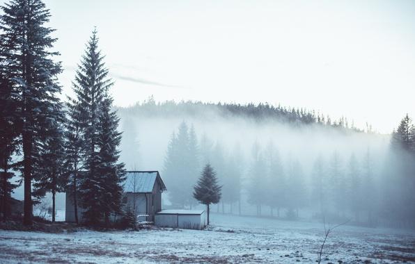 Картинка зима, лес, снег, деревья, туман, дом, опушка