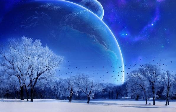 Картинка зима, небо, деревья, голубой, луна