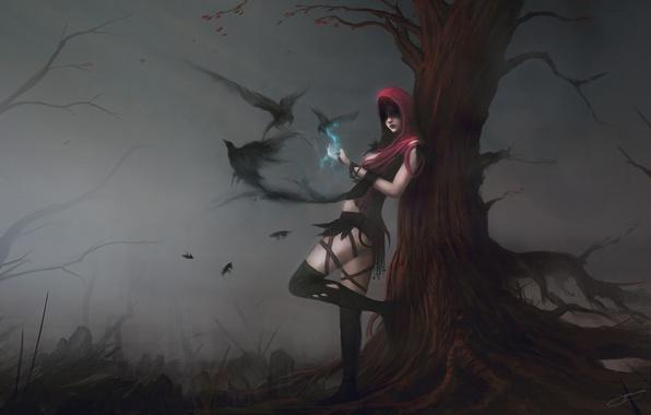 Картинка девушка, птицы, туман, дерево, магия, арт, капюшон, вороны, dragon age, morrigan, blinck