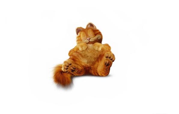 Картинка кот, минимализм, пушистый, рыжий, спит, Гарфилд, Garfield