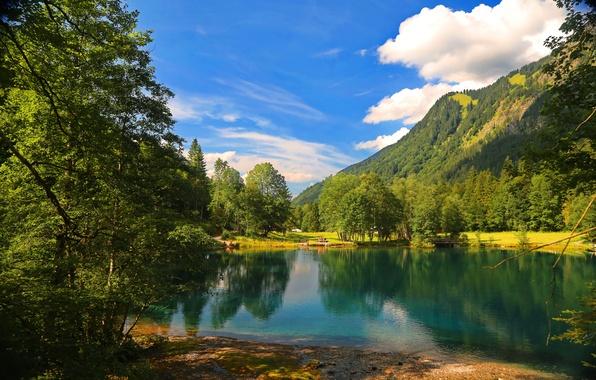 Картинка лес, облака, горы, природа, озеро, елки, forest, nature, cloud, mountains, lake, tree