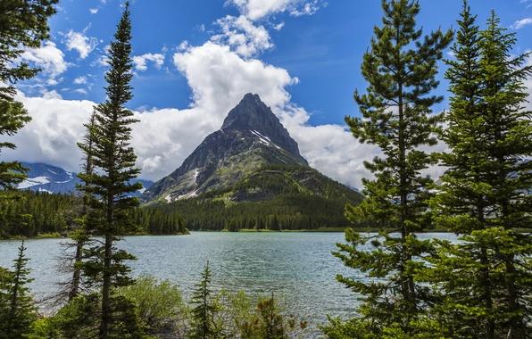 Картинка лес, деревья, горы, озеро, берег, США, Glacier National Park, Montana
