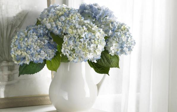 Картинка цветы, чистота, букет, картина, голубые, ваза, белые