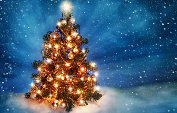 Картинка лед, свет, снег, украшения, lights, елка, Новый год, ice, new year, на улице, snow, merry …