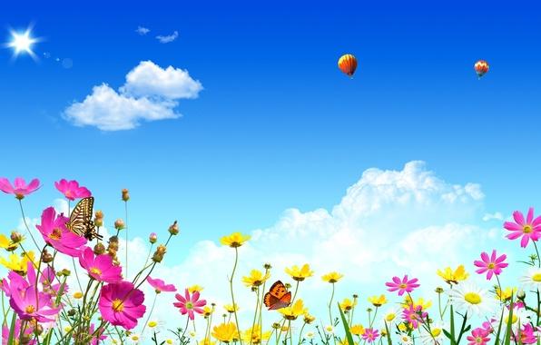 Картинка лето, небо, облака, свет, цветы, природа, воздушные шары, тепло, бабочка, весна, summer, блик, spring