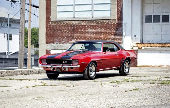 Фото обои Camaro, шевроле, камаро, 1969, Chevrolet
