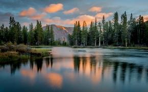 Обои йосемити, национальный парк