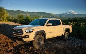 Картинка 2015, TRD, Off-Road, такома, Toyota, Tacoma, тойота