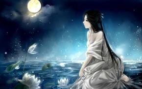 Картинка арт, кувшинки, аниме, луна, озеро, девушка, ночь, небо, clouble, облака