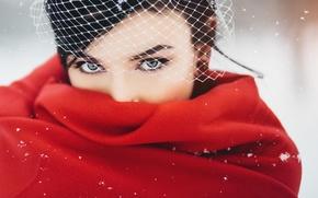Картинка зима, девушка, брюнетка, красная, вуаль, накидка