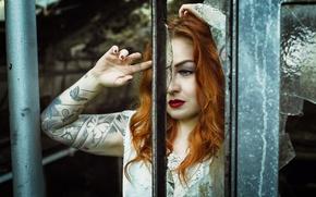 Картинка взгляд, девушка, портрет, Chat Noir