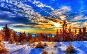 Картинка зима, небо, снег, деревья, природа