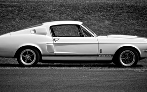 Картинка Shelby, GT500, Muscle car, Mustang, Ford