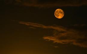 Обои полнолуние, ночь, небо, Луна, облака