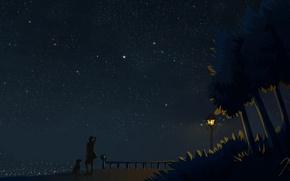 Картинка ночь, фонарь, разное