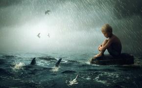Картинка волны, дождь, акула, мальчик