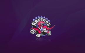 Обои Минимализм, Мяч, Спорт, Баскетбол, Динозавр, Логотип, Фиолетовый, Текстуры, NBA, Toronto Raptors