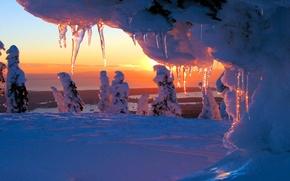 зима, снег, закат, деревья, сосульки, обои