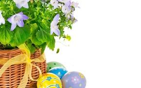 Картинка цветы, яйца, пасха, Easter