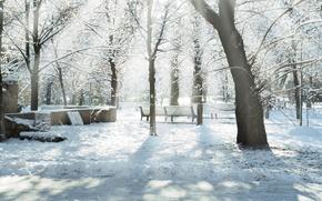 Обои парк, лучи, снег, зима, Snow trees, дервья, скамейки, солнце