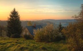 Картинка лес, трава, деревья, горы, дом, рассвет, Швейцария, Bohemian