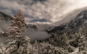 Картинка небо, деревья, горы