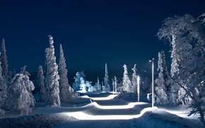 Картинка зима, дорога, небо, снег, деревья, ночь, огни
