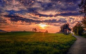 Картинка дорога, небо, трава, облака, деревья, пейзаж, природа