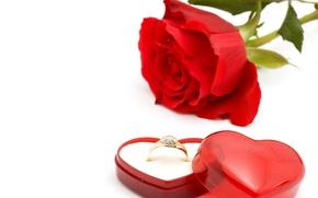Картинка романтика, роза, кольцо, красная, flowers, romantic, коробочка, обручальное, wedding