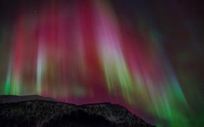 Обои aurora borealis, северное сияние, небо