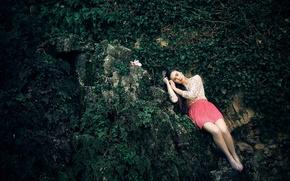 Обои цветок, девушка, камни, ножки