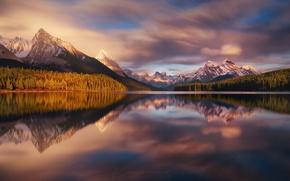 Картинка лес, небо, свет, горы, озеро