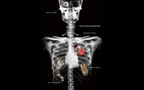 Обои repoman, скелет, рентген, потрошители