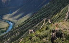 Картинка Горный Алтай, Mobiba, Серпантин, Горный перевал Кату-Ярык, Мобиба, Бантуризм