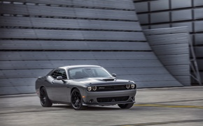 Картинка car, Dodge, Challenger, grey, muscle car, T/A 392