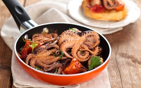 Обои осьминоги, сковорода, еда, морепродукты
