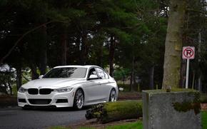 Картинка BMW, white, front, F30