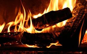 Обои тепло, дерево, огонь, костер, дрова