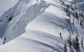 Картинка снег, деревья, горы, следы, лыжня, турист