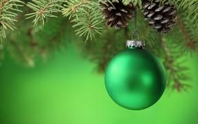 Обои Новый Год, ветка, ель, зеленый, игрушки, елочные, шишки, шарик, New Year, Christmas, елка, шар, Рождество